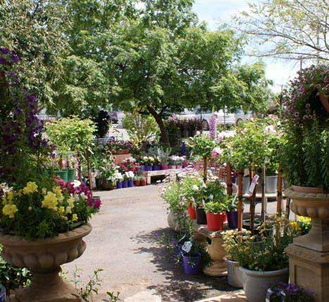 Narrogin Nursery, Cafe & Gallery